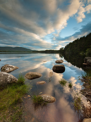 P7167163 