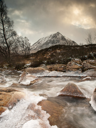 P1317838 