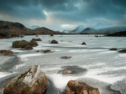 P1317941 