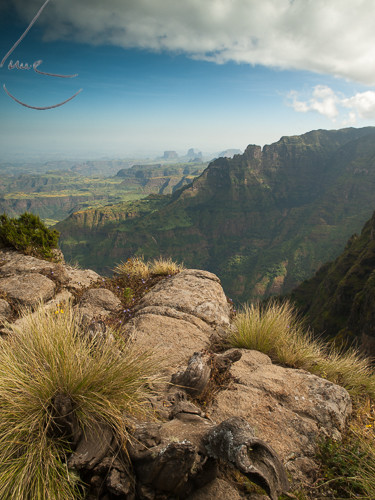 PA172502 